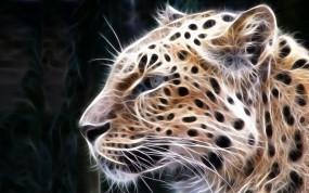Обои Рисованный Леопард: Леопард, Хищник, Дикая кошка, Прочие животные