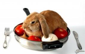 Обои Кролик на сковороде: Кролик, Блюдо, Вилка, Сковородка, Зайцы