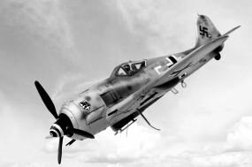 Обои Focke Wulf Fw-190: Немец, Focke-Wulf, Самолеты