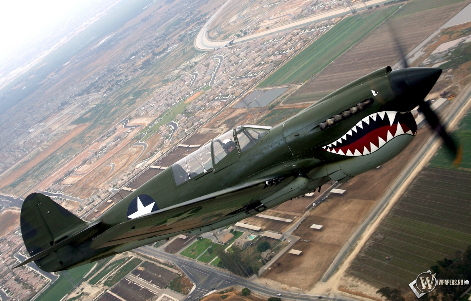 Curtiss P-40 1600x1024