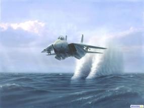 Обои F-14 Tomcat: Истребитель, F-14, Tomcat, Истребители