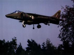 Обои Истребитель Harryer: Истребитель, Посадка, Хариер, Harrier, Истребители