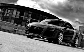 Audi-TR8