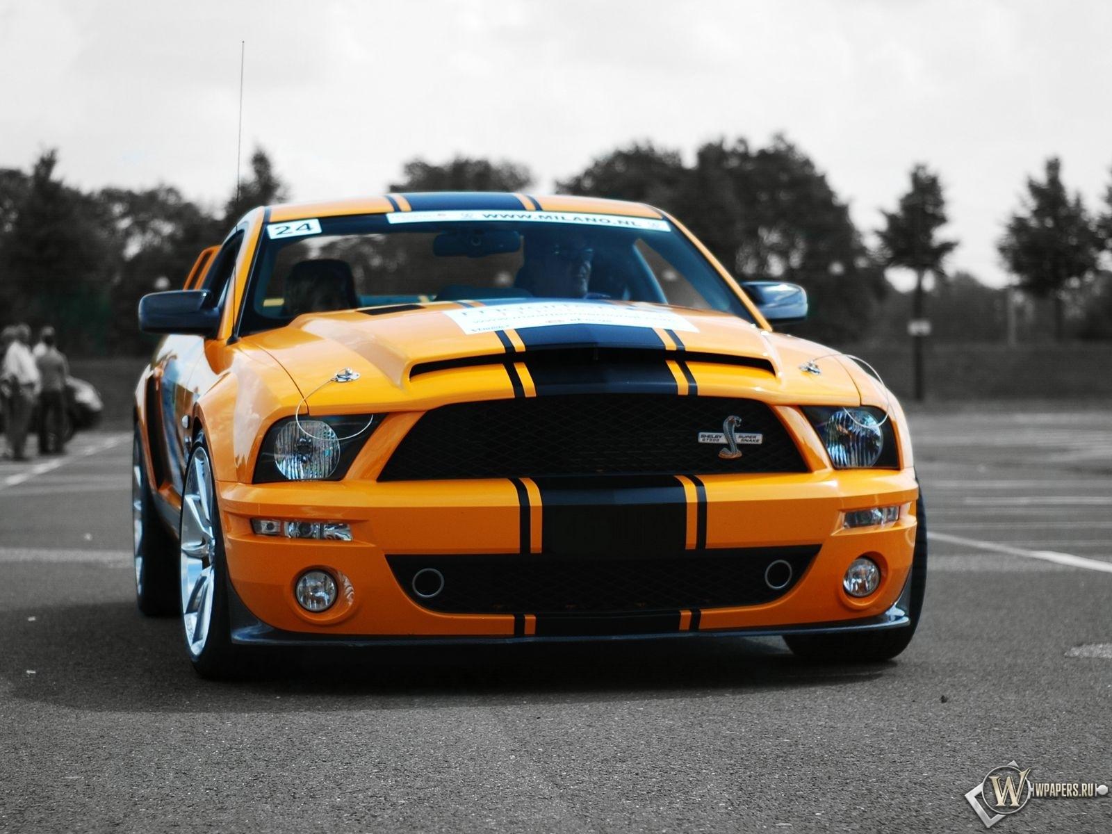 Фото форд gt 500
