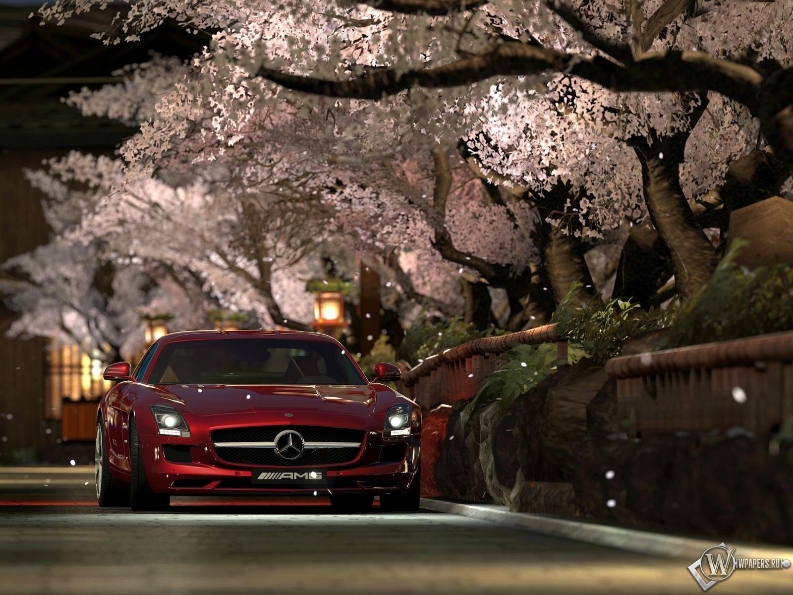 Turismo 5 и сакура мерседес обоев 10 сакура