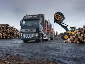 Volvo FH16 Timber Truck