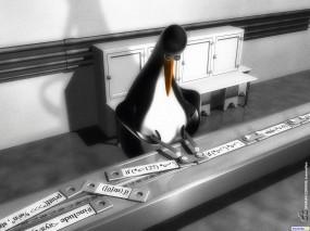 Обои Linux code: , Компьютерные-Фэнтези