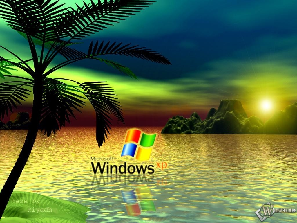 Обои xp пальма пальма windows xp 1024x768