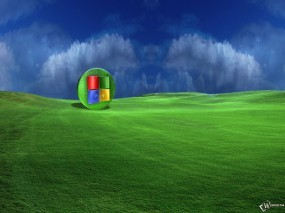 Обои XP поле: Поле, Windows XP, Windows