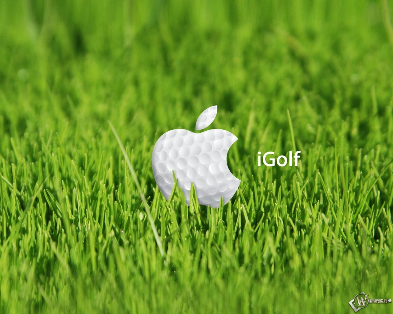 Apple igolf 1280x1024