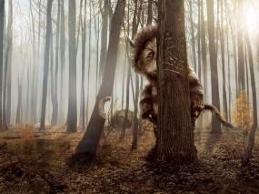 Обои Там, где живут чудовища: Лес, Дерево, Монстр, Фильм, Фильмы
