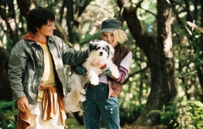 Обои Bridge to Terabithia: Собака, Фильм, AnnaSophia Robb, Фильмы