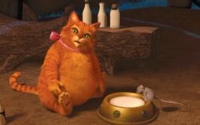 Толстый котяра из шрека