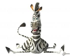 Обои Зебра из мадагаскара: Мадагаскар, Зебра, Мультфильмы