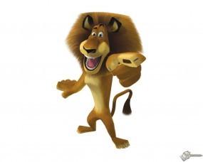 Обои Алекс из мадагаскара: Лев, Мадагаскар, Мультфильмы