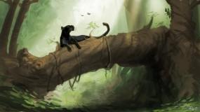 Обои Маугли: Джунгли, Пантера, Багира, Мультфильмы