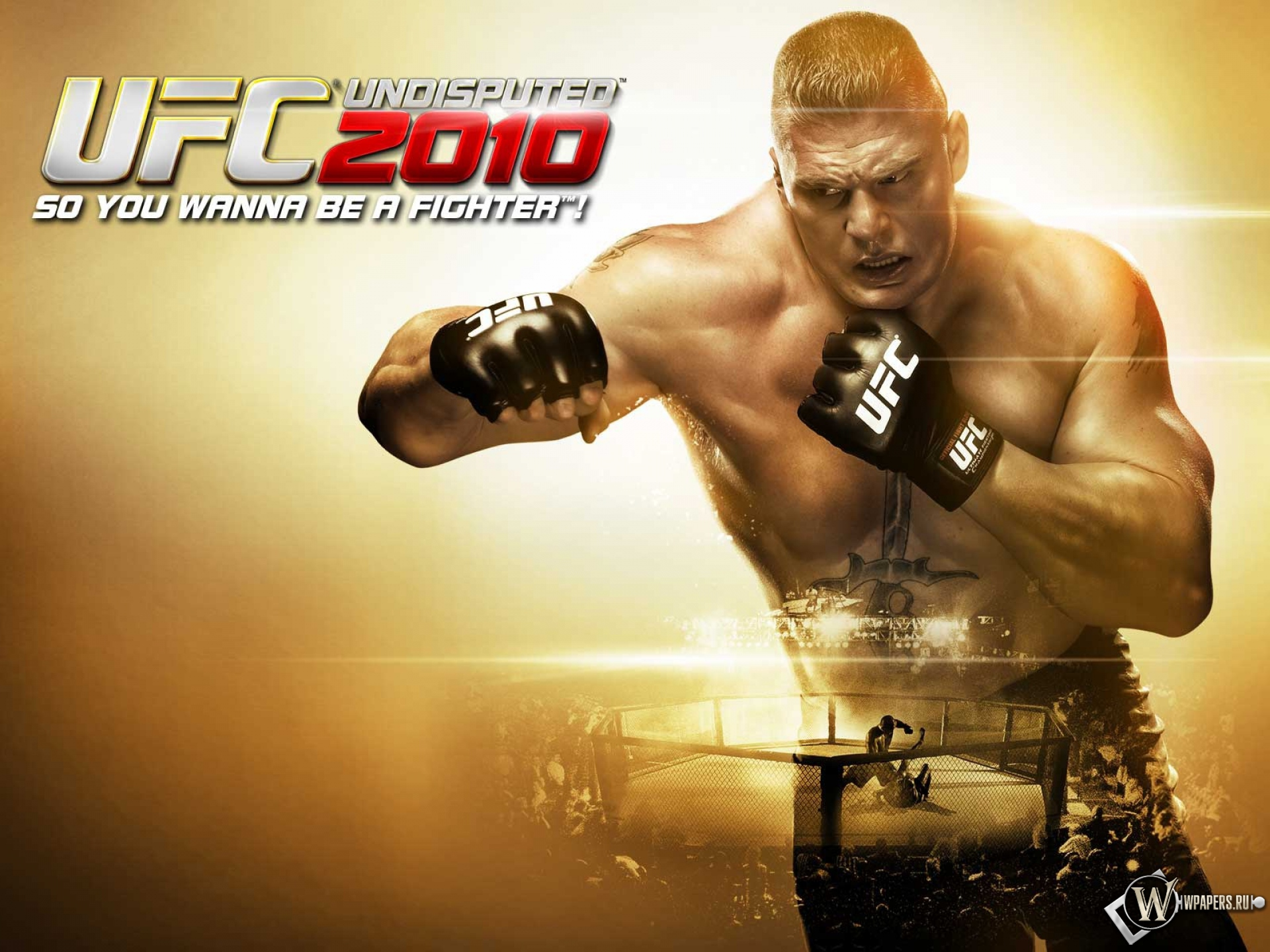 http://wpapers.ru/wallpapers/games/other-games/6653/1920x1440_UFC-2010.jpg