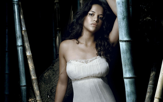 Michelle Rodrigues