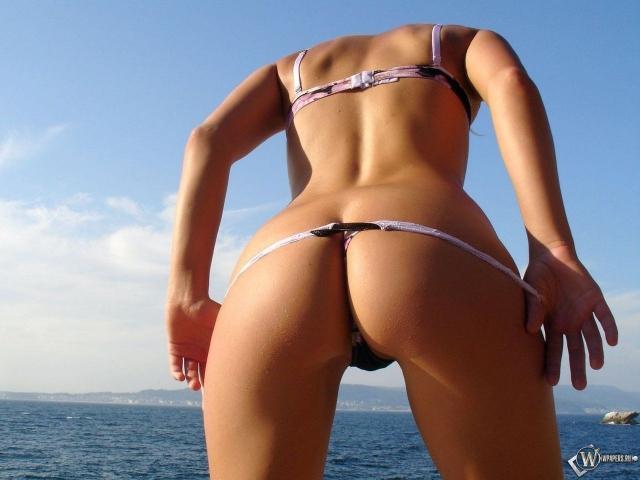 Женская попка в бикини