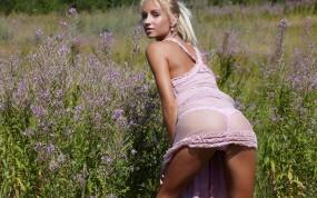 Обои Блондинка на русском поле: Платье, Поле, Розовое белье, Растения, Девушки