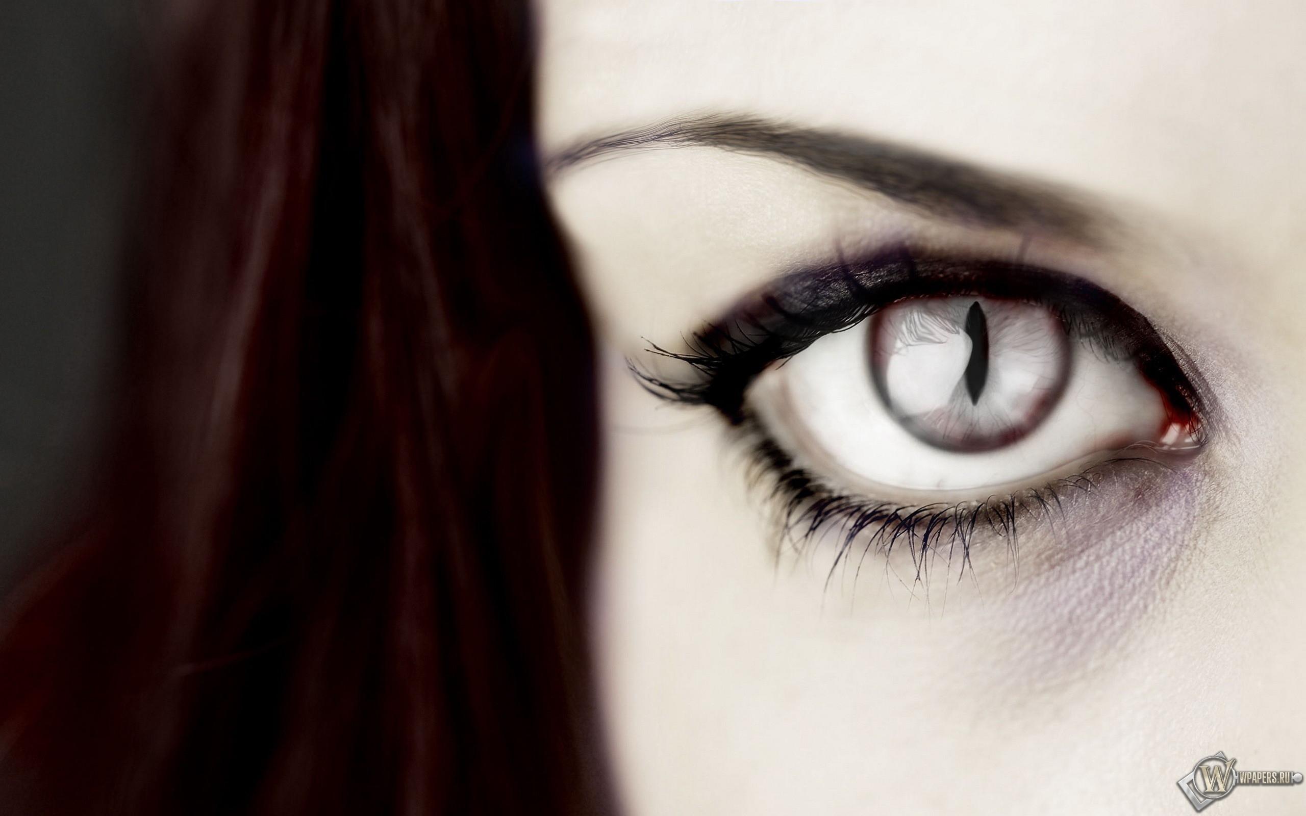 Хищный глаз 2560x1600