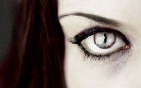 Обои Хищный глаз: Глаз, Хищник, Глаза