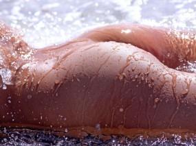 Обои Мокрая попка: Капли, Попка, Мокрые девушки