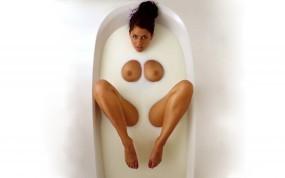 Обои Девушка в молоке: Грудь, Молоко, Девушка, Ванная комната, Мокрые девушки