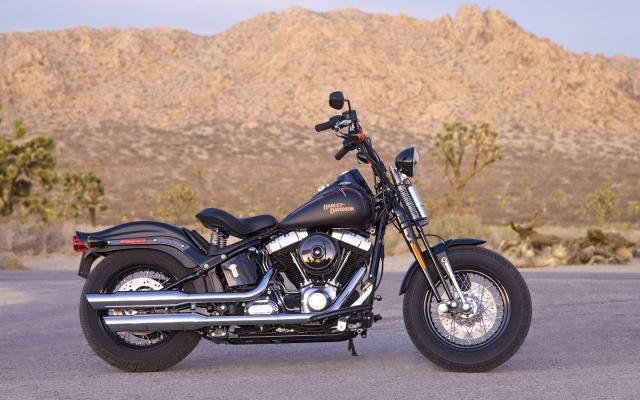 Harley-Davidson Cross-Bones