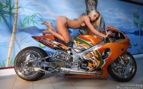Обои Спортбайк: Девушка, Бикини, Спортбайк, Мотоциклы