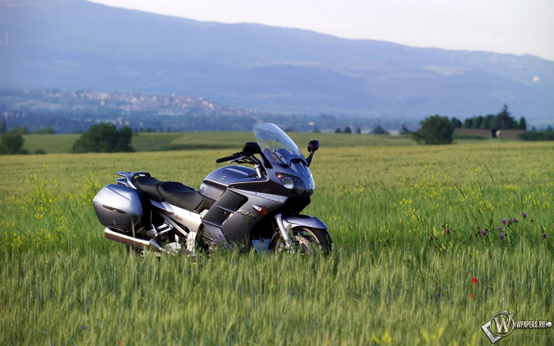 Черный мотоцикл в поле  № 3425325 бесплатно