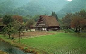 Обои Дом в лесу: Лес, Поле, Дом, Природа