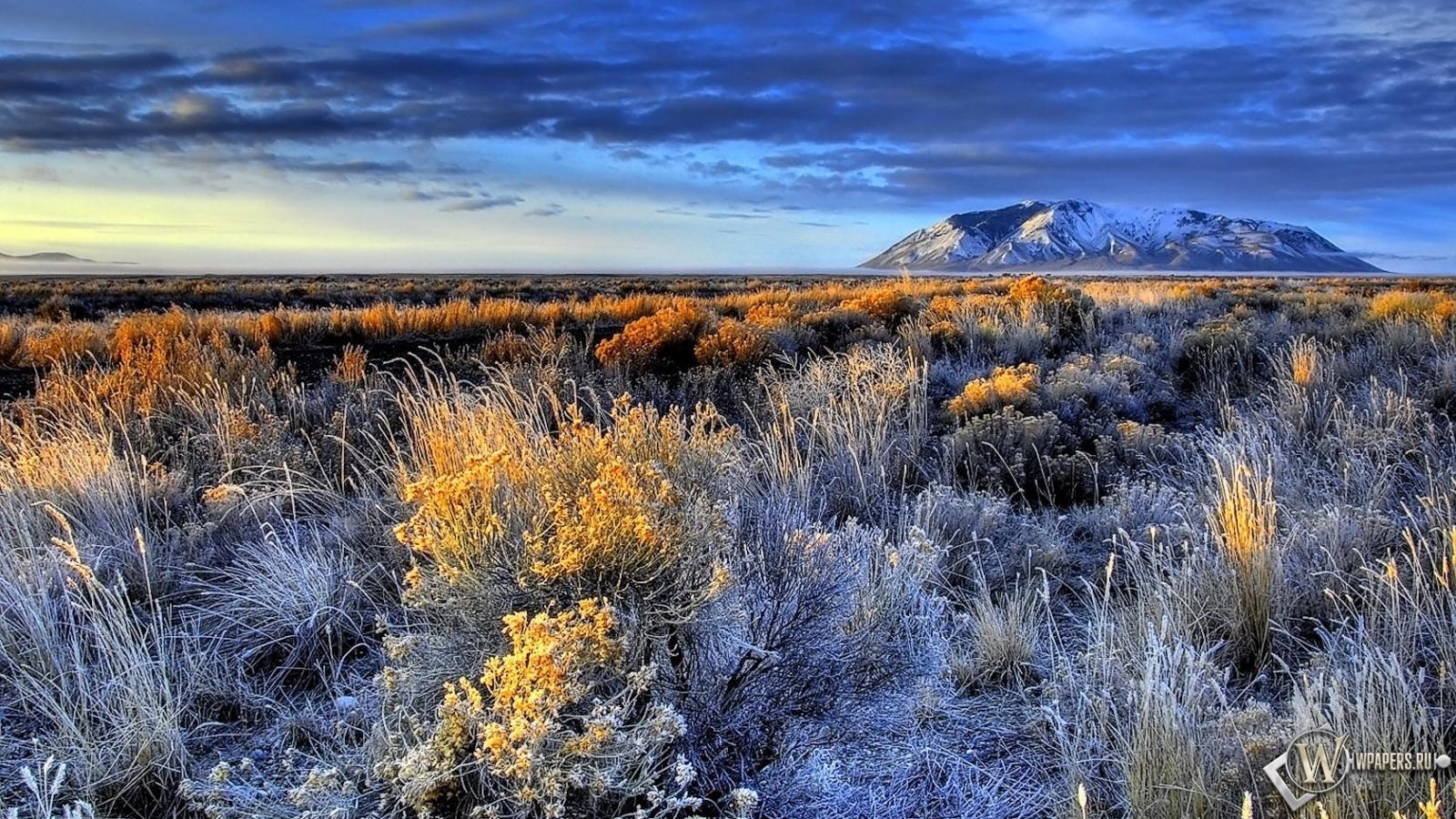 Обои красивый пейзаж горы трава