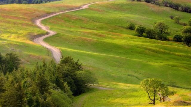 Тропинка среди зелёных холмов