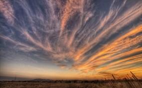 Обои Перистые облака над полем: Облака, Закат, Поле, Небо, Природа