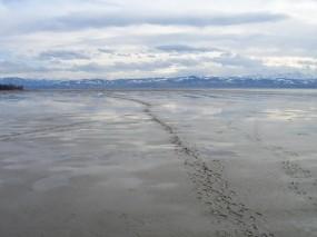 Обои Muddy Background: Горы, Следы, отлив, Природа