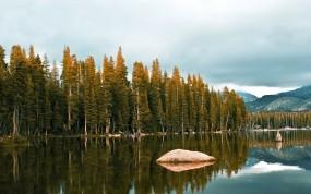 Обои Лесное озеро: Река, Вода, Деревья, Камни, Озеро, Обои, Пейзажи, леса, Природа