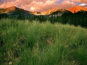 Обои Парк в Колорадо: Облака, Горы, Трава, Парк, Колорадо, Природа