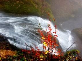 Обои Осенний водопад: Река, Осень, Водопад, Листья, Природа