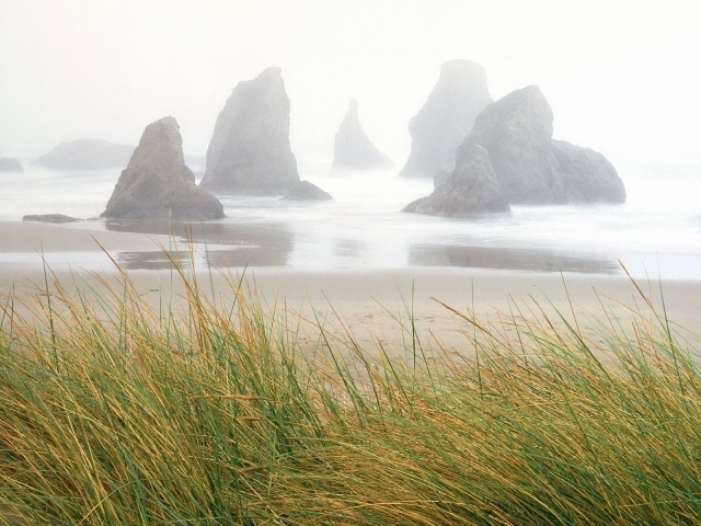 Туман над скалами