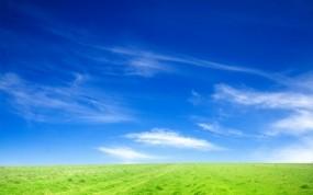 Обои горизонт зелёного поля: Природа, Поле, Трава, Небо, Горизонт, Природа