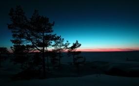 Обои Деревья на закате: Зима, Снег, Деревья, Закат, Природа