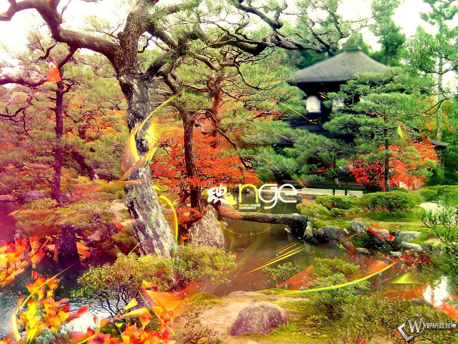 Обои китайский сад деревья сад