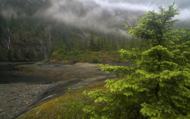 Природа Аляски