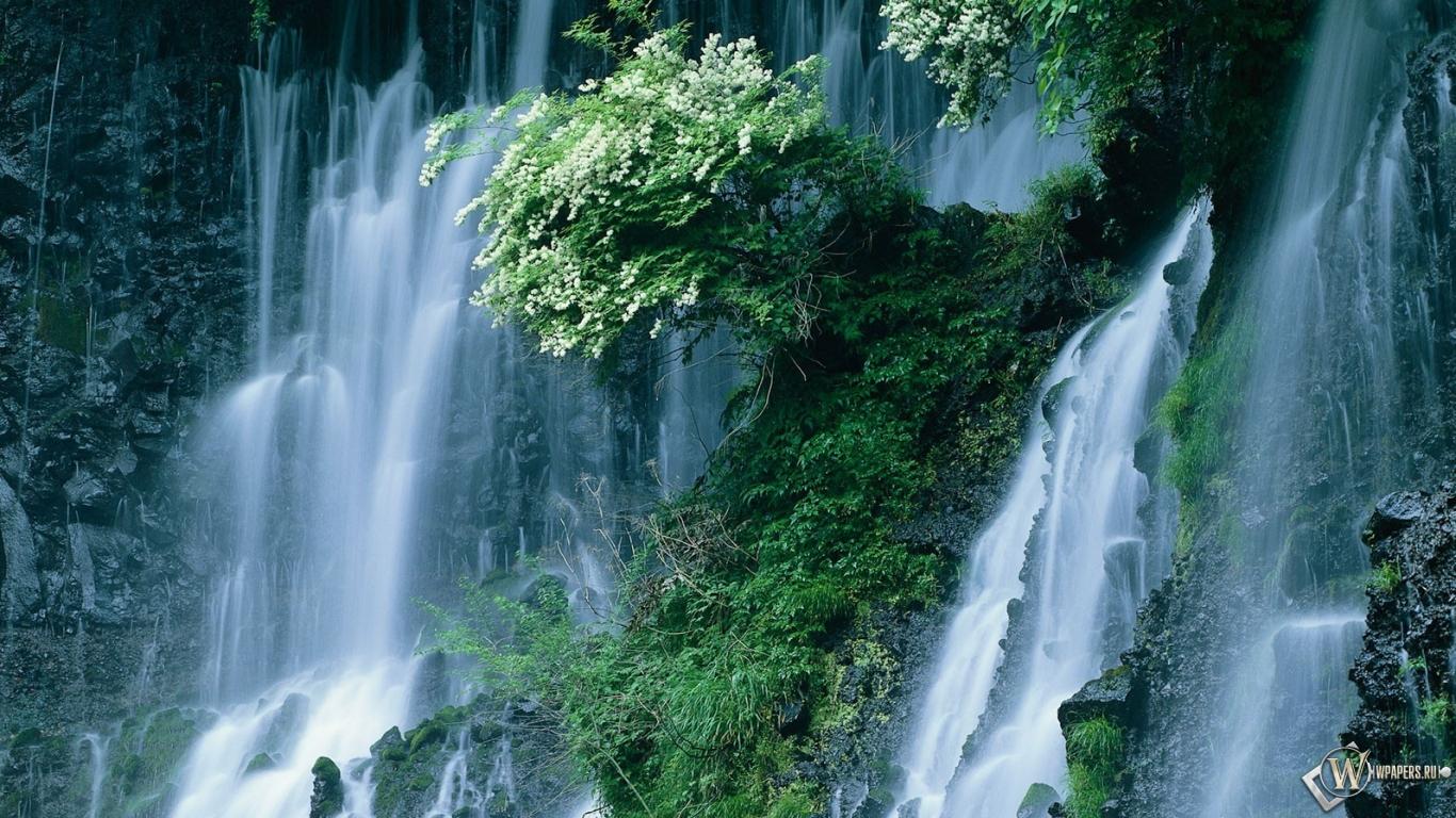 Обои для рабочего стола живой водопад скачать бесплатно 8