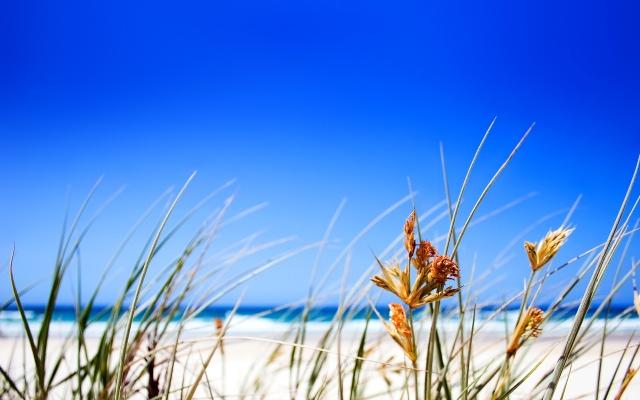 Пляж из белого песка