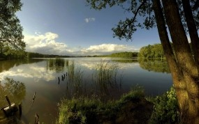 Обои Лесное озеро: Облака, Лес, Деревья, Озеро, Зима