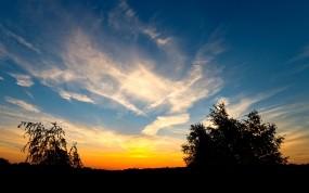 Обои Красивый закат: Облака, Деревья, Закат, Прочие пейзажи