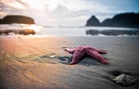 Обои Колодец Тора: Пляж, Песок, Природа, Звезда, Природа