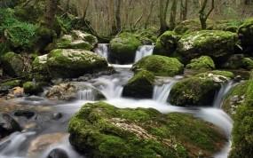 Обои Вода и природа: Вода, Камни, Ручей, Природа